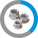ASTM A193 B7 Flange Nuts