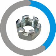 Inconel 600 Slotted Nuts